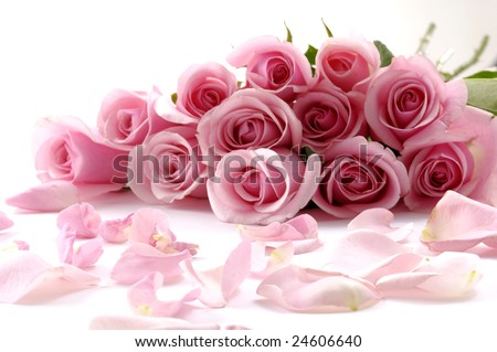 bouquet of beautiful flowers with petals