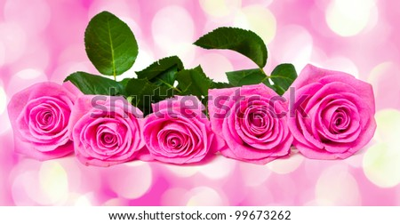 bouquet of beautiful pink roses  with pink lights in the background