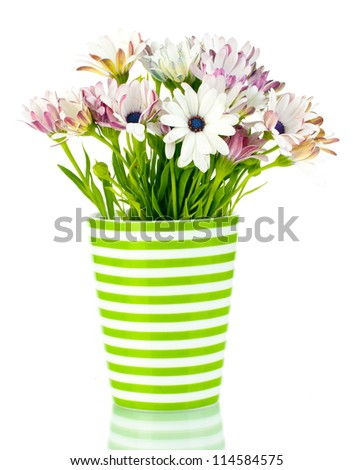 bouquet of beautiful summer flowers in vase, isolated on white