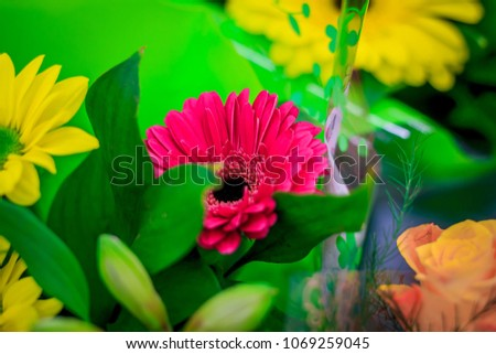 Bouquet of bright flowers #1069259045