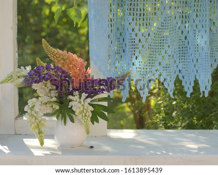 Bouquet of colorful lupines in a white vase on an open window with blue lace curtains, looking out into the summer sunny garden. Still life with flowers. Selective focus.