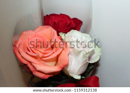 bouquet of colorful roses #1159312138