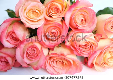 Bouquet of coral roses close up #307477295