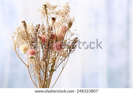 Bouquet of dried flowers in vase on light background
