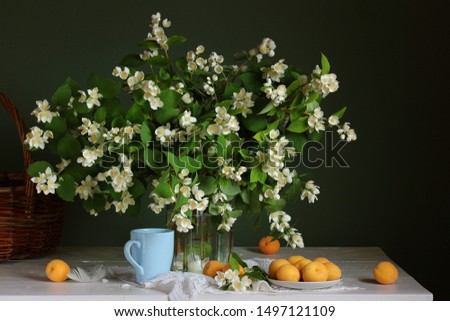 bouquet of flowering branches of Jasmine and apricots. still life with flowers in a vase and fruit.