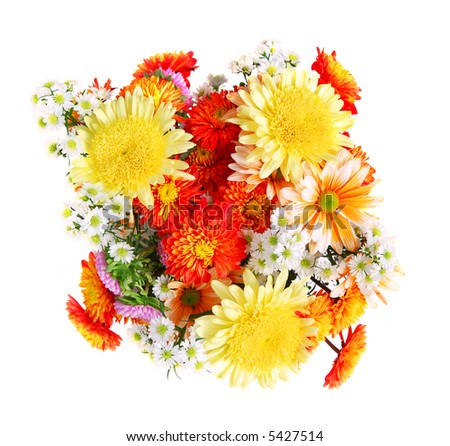 Bouquet of flowers, top view, isolated on white background
