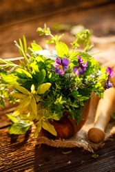 Bouquet of fresh herbs in an olive wood mortar on a wooden table close up view