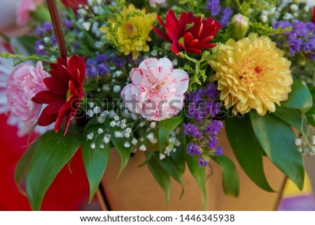 Bouquet of fresh red Pink, white , yellow roses  . Bouquet of multicolored roses . Red white , yellow flower picture close up in the bouquet.
