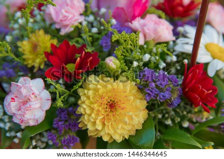 Bouquet of fresh red, white , yellow, purple roses  . Bouquet of multicolored roses . Pink, yellow flower picture close up in the bouquet.
