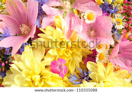 Bouquet of fresh summer flowers close up