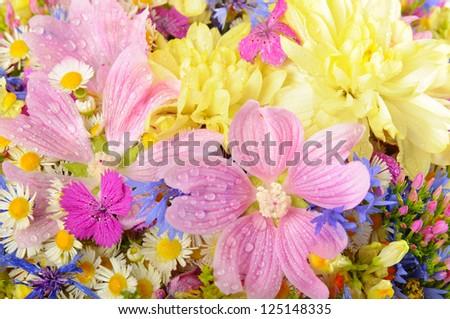 Bouquet of fresh summer flowers close up