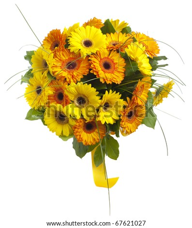Bouquet of gerbera flowers. Isolated on white.