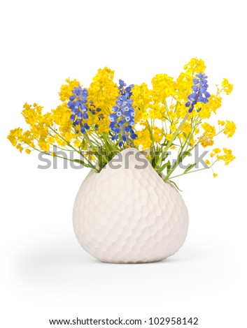 Bouquet of Grape Hyacinths (Muscari) and Basket of Gold (Aurinia saxatilis) in a vase, isolated