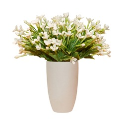 bouquet of jasmines In cup. isolated white background