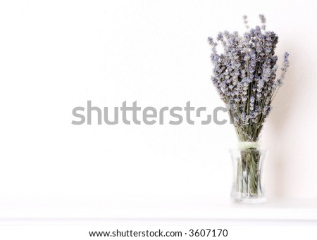 Bouquet of Lavender in a Glass Vase on a Ledge