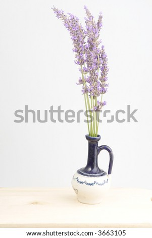 Bouquet of Lavender in a  Vase