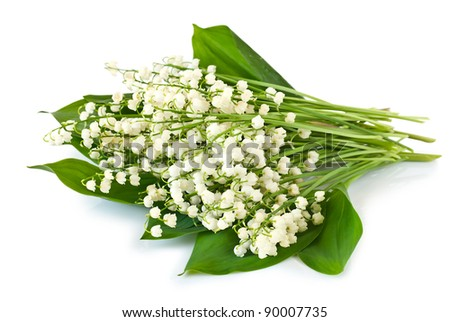 Lilies of The Valley Bouquet Bouquet of Lilies of The