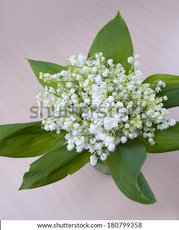 Bouquet of lily of the valley.  Spring flowers.
