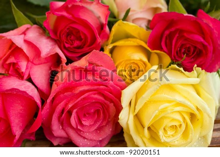 bouquet of multicolored  roses in water droplets