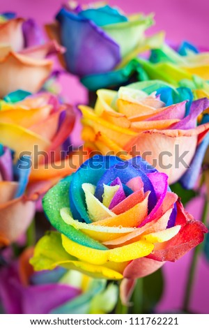 bouquet of multicolored roses (Rainbow rose)