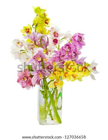 Bouquet of orchid flowers in glass vase isolated over white background