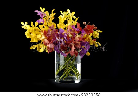 Bouquet of orchids in vase on black