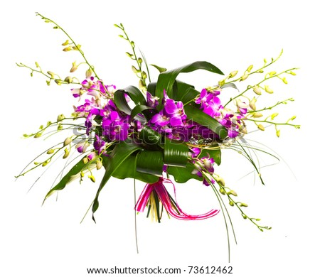 bouquet of orchids isolated over white background
