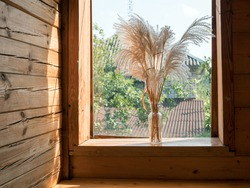 Bouquet of pampas grass on wooden windowsill of countryside cottage, Idyllic atmosphere with flowers blew by the wind