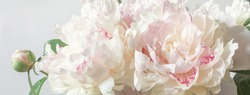 Bouquet of peonies close-up. Image for the design of greeting cards on the theme of wedding, Valentine's Day, declaration of love and other greetings.