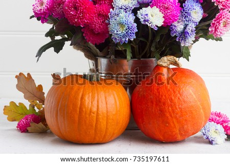 bouquet of pink and blue chrysanthemum flowers with two pumpkins #735197611