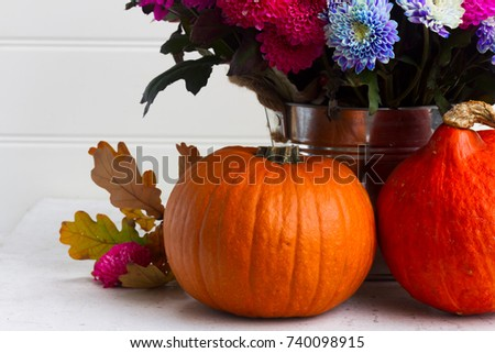 bouquet of pink and blue chrysanthemum flowers with two pumpkins close up #740098915