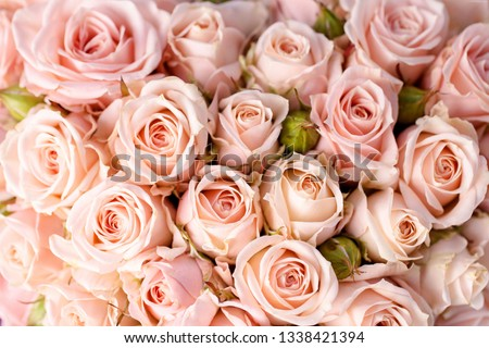 Bouquet of pink roses #1338421394