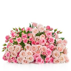 Bouquet of pink roses isolated on white background. Beautiful flowers