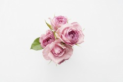 Bouquet of pink roses on a white background. Minimal composition. Flat lay