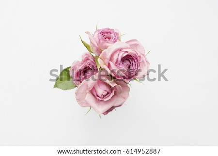 Bouquet of pink roses on a white background. Minimal composition. Flat lay #614952887