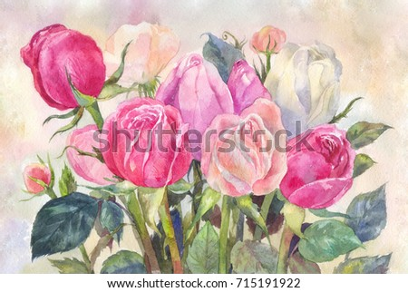 bouquet of pink roses, watercolor illustration