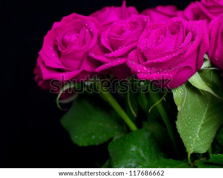bouquet of pink roses with water drops on black background