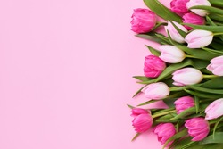 Bouquet of pink tulips on pink background. Mothers day, Valentines Day, Birthday celebration concept. Greeting card. Copy space for text, top view