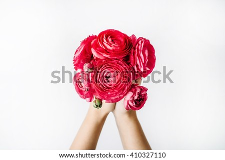 bouquet of red ranunculus or roses in girl\'s hands on white background. Flat lay, top view