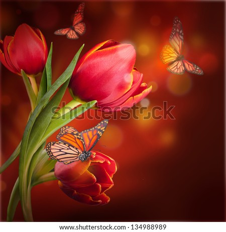 Bouquet of red tulips against a dark background and butterfly #134988989