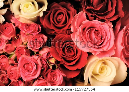 bouquet of roses,