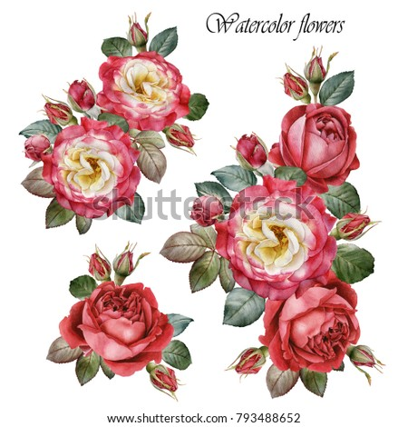 Bouquet of roses. Flowers set of watercolor red roses