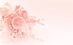 Bouquet of roses in pastel color style soft blur for background.