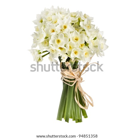 Bouquet of small white daffodil isolated on white background.