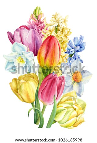 bouquet of spring flowers  a...