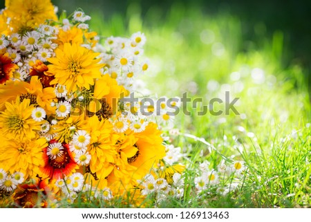 Bouquet of spring flowers lying on green grass