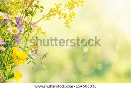 Bouquet of summer meadow flowers  with bokeh and copy space,  floral background