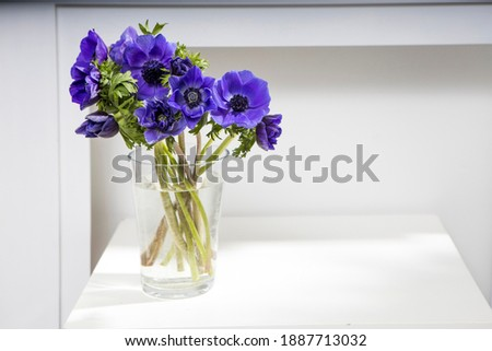 bouquet of the blue anemones in a glass vase on a white table near the pale gray wall. Vertical frame. Copy space. Stockfoto ©