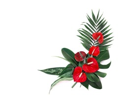 Bouquet of tropical leaves (Monstera, Dieffenbachia, branch palm, Ficus) and red flowers Anthurium (tailflower, flamingo flower, laceleaf) on a white background with space for text. Top view, flat lay