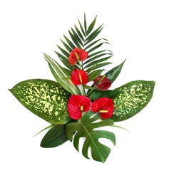 Bouquet of tropical leaves (Monstera, Dieffenbachia, branch palm, Ficus benjamina) and red flowers Anthurium (tailflower, flamingo flower, laceleaf) on a white background. Top view, flat lay.